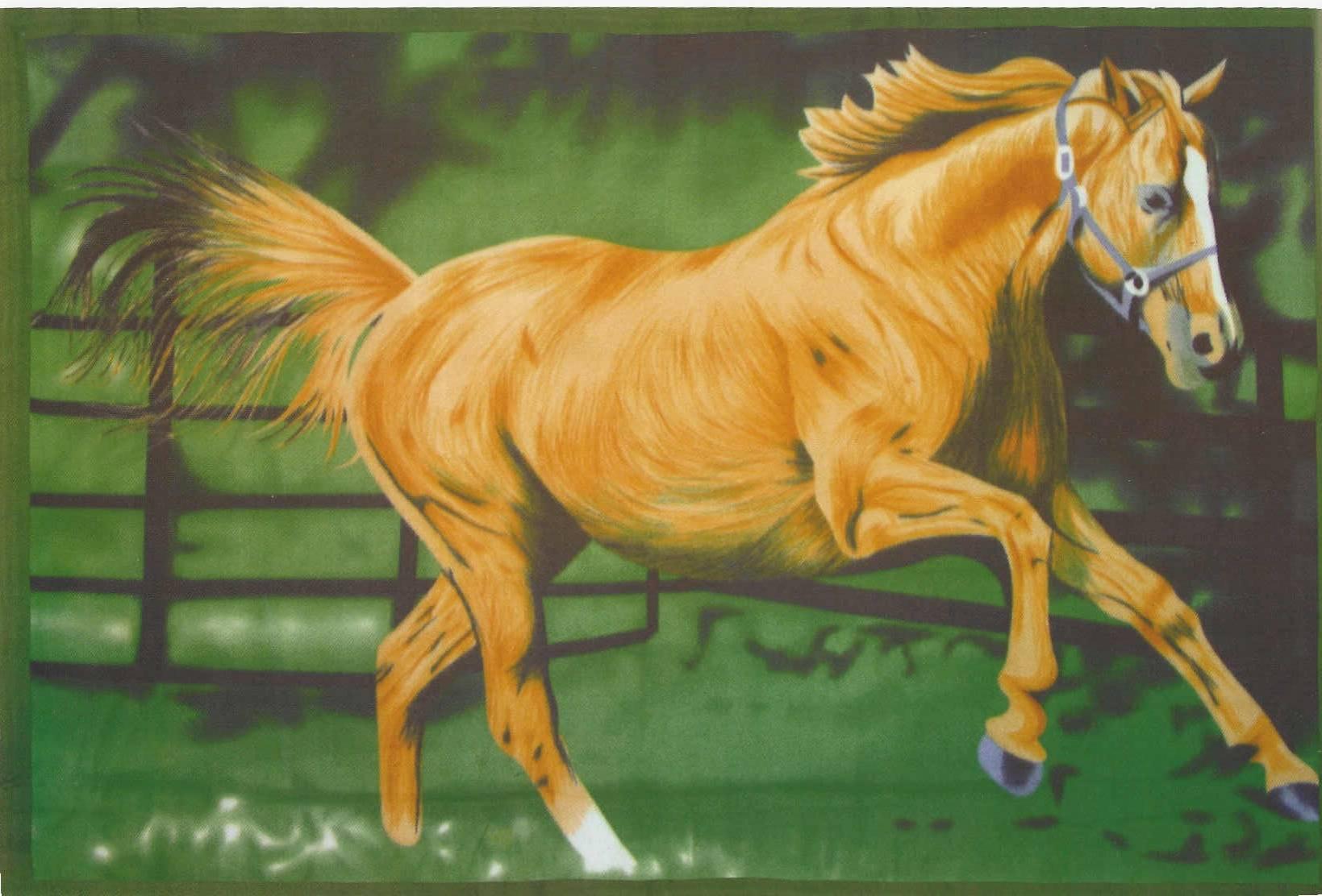 running horse blanket