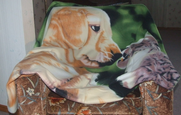 dog and cat design throw