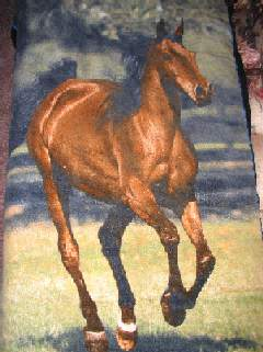 horse design beachtowel